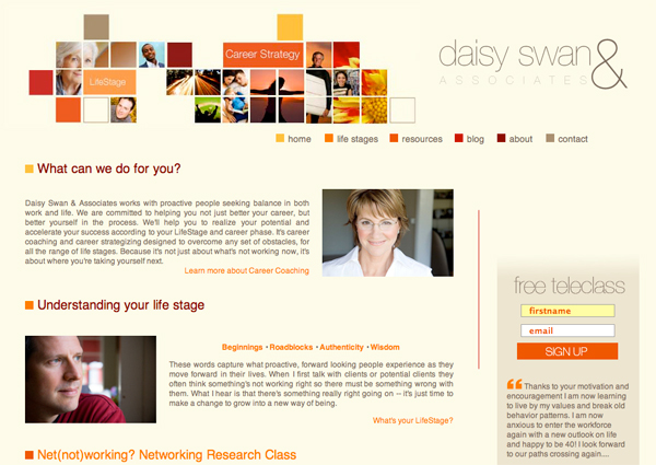 Online Business solutions and marketing for DaisySwan.com - Site for Daisy Swan the Los Angeles Career Coach