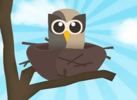 HootSuite for twitter automation